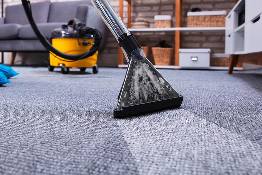 Professionelle Teppichbodenreinigung
